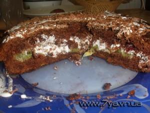 Пирог с клюквой и киви в разрезе