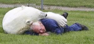Дружба з полярною медведицею