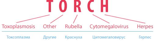 TORCH-розшифрування