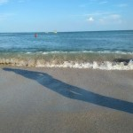 Море. Затока 2017
