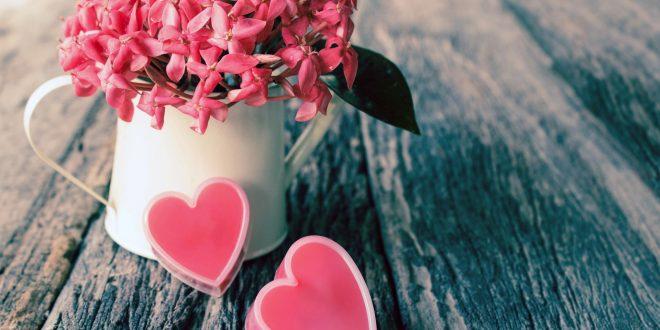 День закоханих у Вінниці 2018